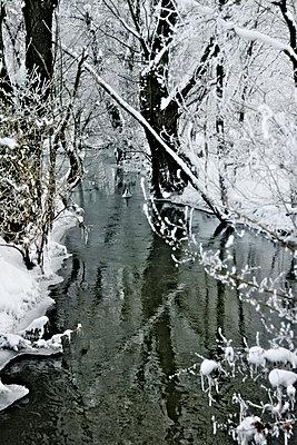 Bach im Winter - p476m965866 von Ilona Wellmann