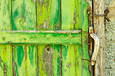 Old green wooden door of barn - p1144m967290 by Hannie  Joziasse