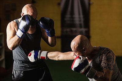 Thai boxers practicing boxing - p1315m1198940 by Wavebreak