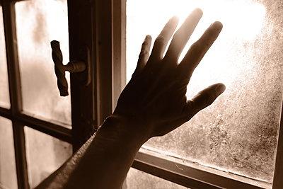 Hand einer Frau an einer Fensterscheibe - p945m2182290 von aurelia frey
