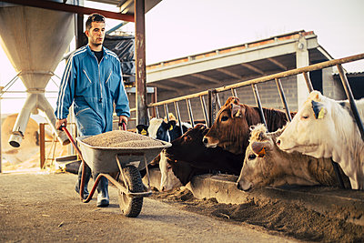 Young farmer wearing blue overall while carrying cart with calf food on his farm - p300m2188025 by Aitor Carrera Porté