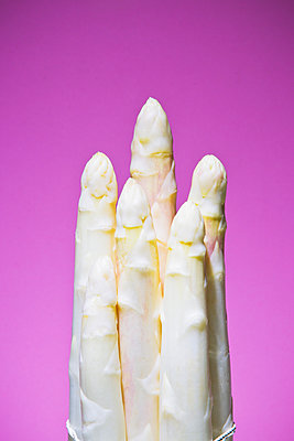 White asparagus - p1149m2098893 by Yvonne Röder