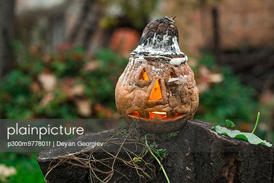 Halloween pumpkin in garden