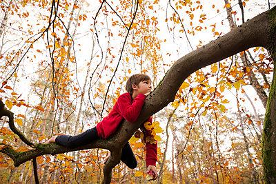 Boy lying on a strong limb - p784m2272960 by Henriette Hermann
