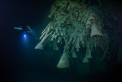Scuba diver exploring unique natural formations known as bells in submerged caves beneath the jungle - p429m1417583 by Rodrigo Friscione