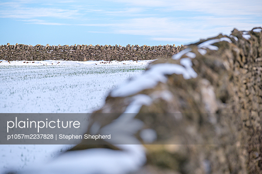 Great Britain, Stonewall in the snow - p1057m2237828 by Stephen Shepherd