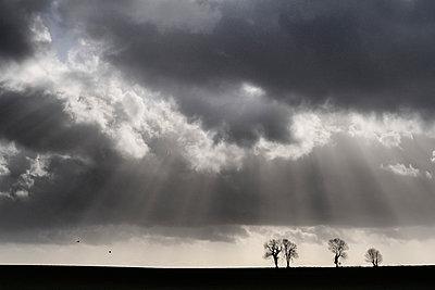 Sonnenstrahlen - p1137m939519 von Yann Grancher
