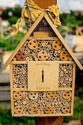 Beekeeping - p1212m1146011 by harry + lidy