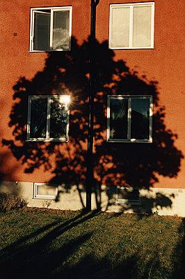 Schatten eines Baumes - p1418m1571372 von Jan Håkan Dahlström