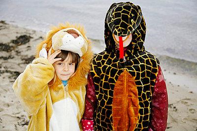 Löwe und Schlange - p2950165 von Nanine Renninger