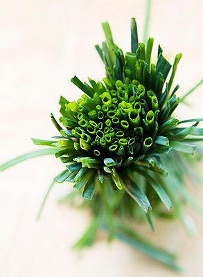 Chives, close-up. - p312m742391f by Jakob Fridholm