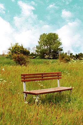 Holzbank    - p450m1138761 von Hanka Steidle