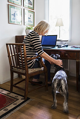Senior woman stroking dog while sitting on chair at home - p426m1114763f by Maskot
