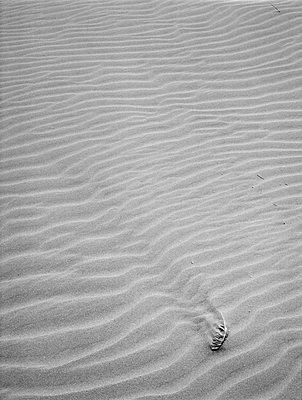 Sandwellen - p1145m954967 von Kerstin Lakeberg