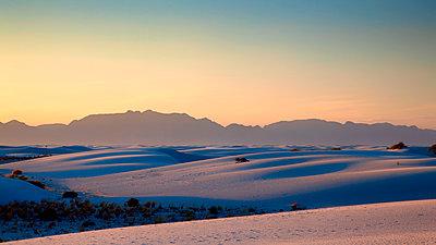 Desert at sunset - p1154m1217581 by Tom Hogan