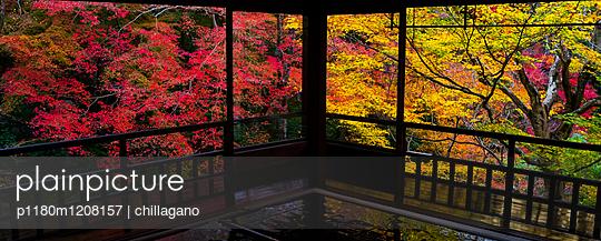 Blick aus einem japanischen Tempel - p1180m1208157 von chillagano