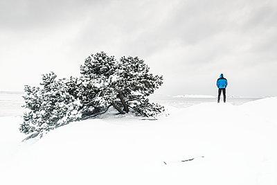 p312m2050231 von Mikael Svensson