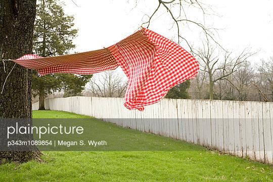 p343m1089854 von Megan S. Wyeth
