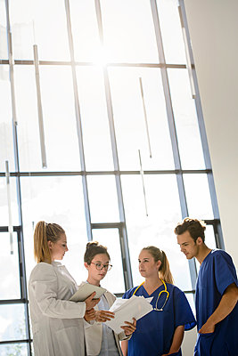Young female and male junior doctors looking at medical records in hospital - p429m2097739 by suedhang photography