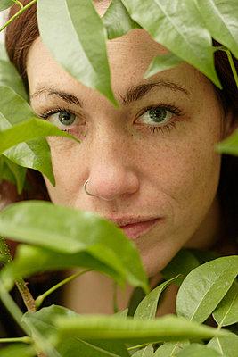 Behind plants - p5060119 by Julia Franklin Briggs