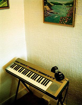 Electric keyboard - p3882233 by Jim Green