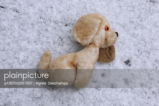 Old Teddy in the Snow - p1307m2257657 by Agnès Deschamps