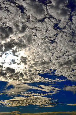 Clouds - p1047m789497 by Sally Mundy