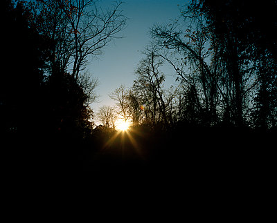 Sunset - p1415m2076736 by Sophie Barbasch