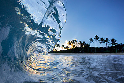 Wave breaking near shore of Ke Iki beach at sunset, north shore of Oahu, Hawaii Islands, USA - p343m1543695 by Sean Davey