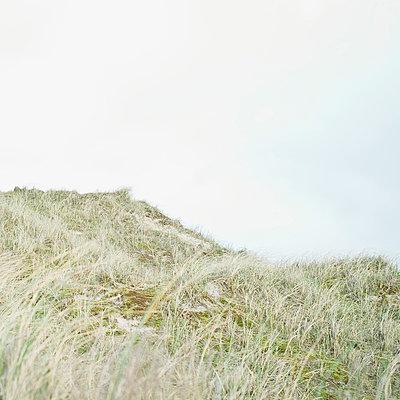 Dunes - p989m940106 by Gine Seitz