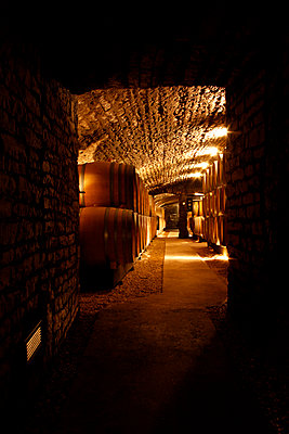 View down the corridor of a wine cellar - p301m799760f by Marc Volk