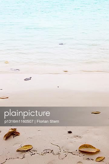Farbige Blätter am Hat Mai Ngam Strand, Koh Surin Meeresnationalpark, Andamanensee, Thailand - p1316m1160507 von Florian Stern