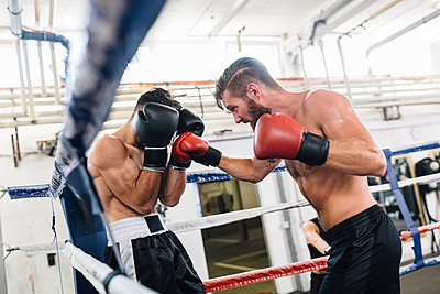 Two boxers fighting in boxing ring - p300m1191675 by Matthias Drobeck
