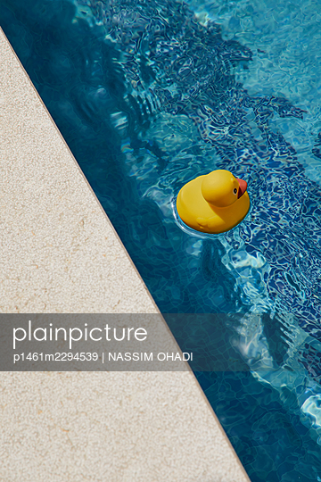 Rubber duck in a pool - p1461m2294539 by NASSIM OHADI
