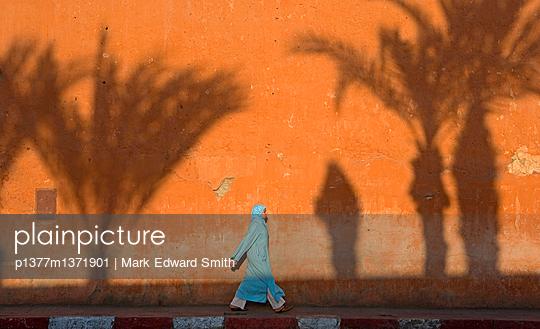 p1377m1371901 von Mark Edward Smith