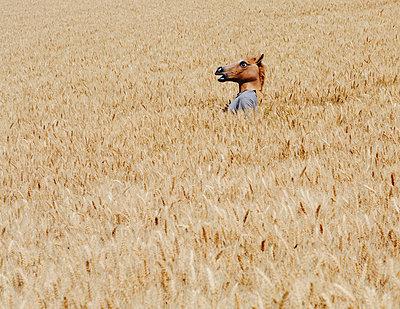 A man wearing a horse mask standing in a wheat field, near Pullman - p1100m875925f by Paul Edmondson