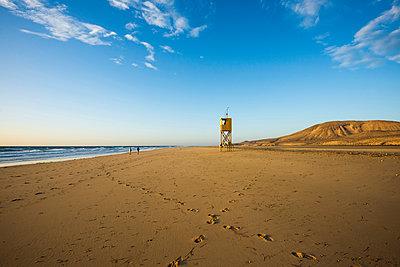 Playa de Sotavento, between Jandia und Costa Calma, Fuerteventura, Canary Islands, Spain - p1316m1422548 by Daniel Schoenen