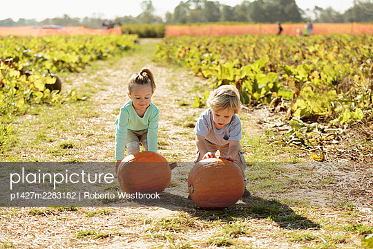 Brother and sister in pumpkin field - p1427m2283182 by Roberto Westbrook