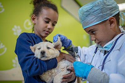 Girl holding labrador puppy while little boy playing veterinarian - p300m1176144 by zerocreatives