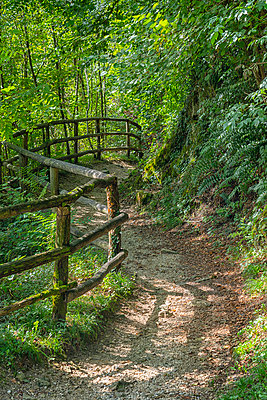 Italy, Veneto, Caglieron caves, Trail in the forest - p300m2083784 by Lorenzo Mattei