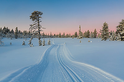 p312m1570434 von Mikael Svensson