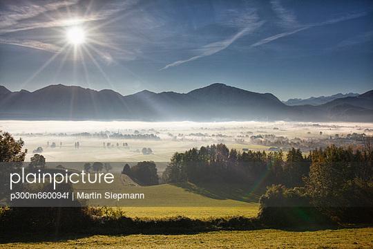 View of tree in fog - p300m660094f by Martin Siepmann