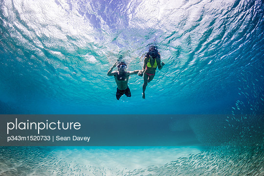 p343m1520733 von Sean Davey