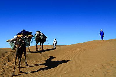 Trough the desert - p503m2135186 by Fabrice Arfaras