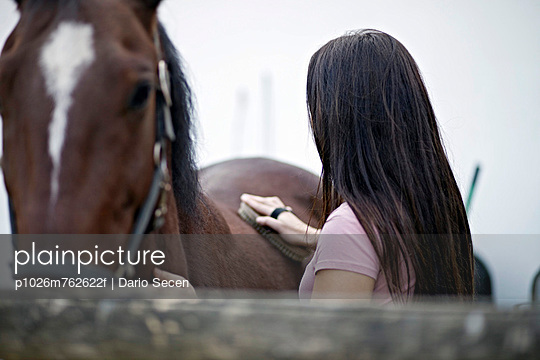 Horse Grooming, Baranja, Croatia, Europe