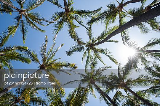 Hawaii - p1261m1124723 von tromp l'oeil