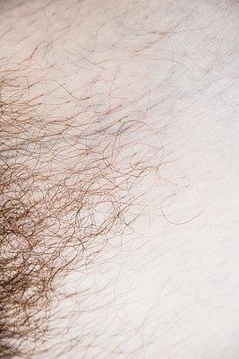 Pubic Hair - p954m1131911 by Heidi Mayer