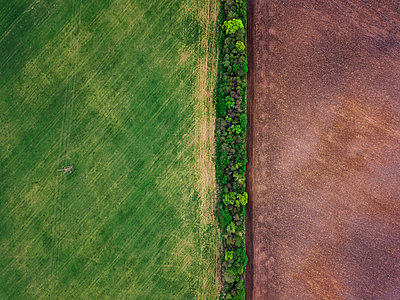 Russia, Moscow Oblast, Aerial view of green and brown countryside fields - p300m2199166 by Konstantin Trubavin