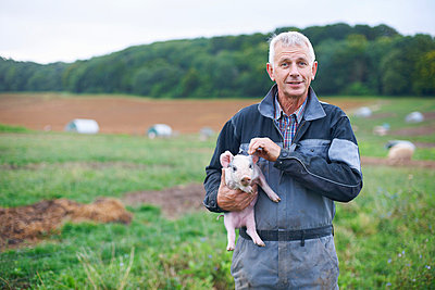 Farmer holding piglet in field - p429m757762f by Peter Muller