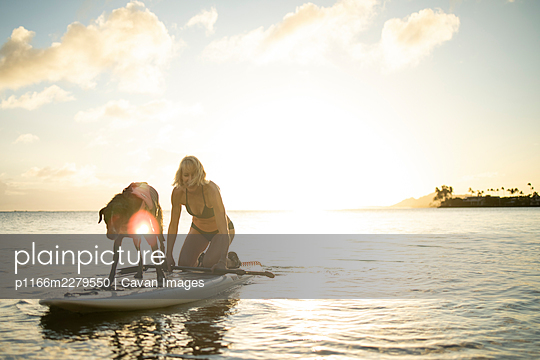 Woman and dog on paddleboard on the beach in Hawaii - p1166m2279550 by Cavan Images